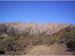 Foto Terreno en Venta en  Cortaderas,  Chacabuco  Terreno 3.100 Mts2