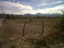 Foto Farms en Venta en  Alto Huaco,  Jachal  FINCA HUACO - SAN JUAN - RUTA 40 Y 150