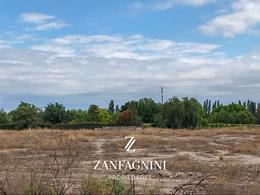 Foto Terreno en Venta en  Guaymallen ,  Mendoza  San Francisco del Monte 3 ha