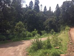Foto Terreno en Venta en  Cañada de Alférez,  Lerma  Cañada de Alférez, excelentes terrenos para rancho o casa de campo.