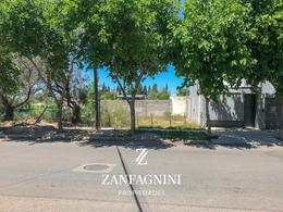 Foto Terreno en Venta en  San Martin ,  Mendoza  Viamonte