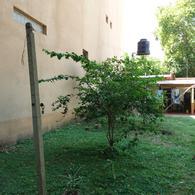 Foto Casa en Venta en  Colon,  Colon  Bolívar al 100