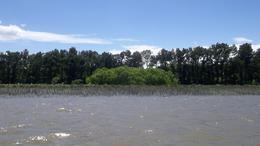 Foto Terreno en Venta en  Canal del Este,  Zona Delta Tigre  Canal del Este 6 Lotes