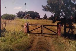 Foto Terreno en Venta en  Santa Rosa De Calchines,  Garay  Ruta 1 km 34 Santa Rosa de Calchines, Departamento Garay, Santa Fe