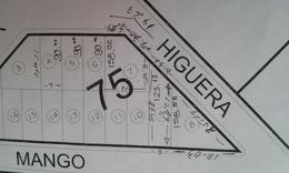 Foto Terreno en Venta en  El Saucillo,  Mineral de la Reforma  6 LOTES  EN SAUCILLO USO COMERCIAL HABITACIONAL
