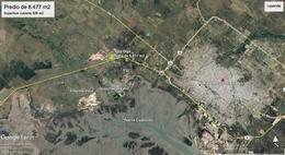 Foto Galpón en Venta en  Gral Daniel Cerri,  Bahia Blanca  Ruta 3 al 700