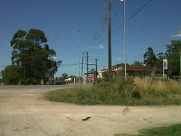 Foto Campo en Venta en  General Madariaga,  General Madariaga  80 HA. MADARIAGA