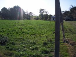 Foto Chacra en Venta en  Colonia del Sacramento ,  Colonia  Chacra de 5 ha. con mejoras ubicada en Camino la Palma Conchilla