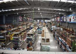 Foto Bodega Industrial en Renta en  El Triunfo,  Iztapalapa  SKG Asesores Inmobiliarios Rentan Bodega en Calzada de la Viga, el Triunfo, Iztapalapa