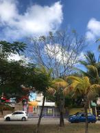Foto Local en Renta en  Cancún,  Benito Juárez  Renta de edificio en Av Labna , Cancun.