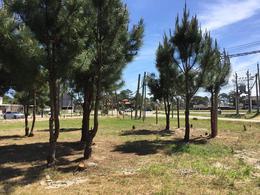 Foto Terreno en Venta en  El Pinar ,  Canelones  AV. Gral. Rivera 100