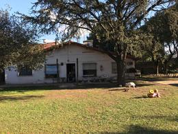 Foto Quinta en Venta en  Trujui,  Moreno  Av. Del libertador al 5100