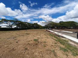 Foto Terreno en Venta en  Santana,  Santa Ana  Lindora / Exclusivo Condominio / Perfectas amenidades