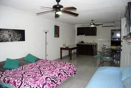Foto Departamento en Renta en  Del Valle,  San Pedro Garza Garcia  Loft amueblado en renta en San Pedro, Río de la Plata