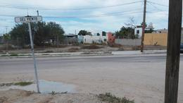 Foto Terreno en Renta en  La Fuente,  La Paz  CALLE DE AGUA Y CALLE DE VIENTO