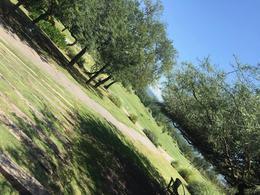 Foto Terreno en Venta en  Valle del Golf,  Malagueño  Lote Central en primera etapa  Valle del Golf