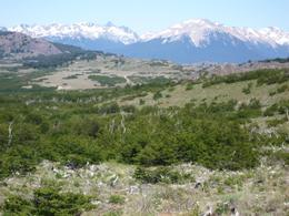 Foto Campo en Venta en  Rio Pico,  Tehuelches  Lago 2