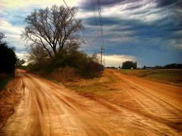 Foto Campo en Venta en  Ejido Colon,  Colon  Ruta 14 Acceso a Colonia Hughes