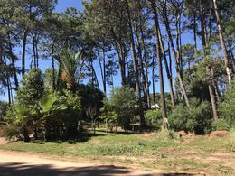 Foto Terreno en Venta en  La Barra ,  Maldonado  Barra Verde 2.950 Mts2