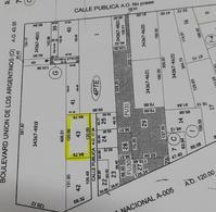 Foto Terreno en Venta en  Residencial Castelli I,  Rio Cuarto  a metros de A005