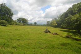 Foto Terreno en Venta en  Horquetas,  Sarapiqui  Río Frío, Sarapiquí
