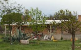 Foto Terreno en Venta en  Inti Hué,  Santa Rosa  Inti Hué