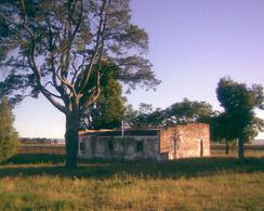 Foto Campo en Venta en  Colonia San Martin,  Saavedra  Ruta 33 Saavedra
