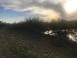 Foto Terreno en Venta en  Villa Paranacito,  Islas Del Ibicuy  Canal de las Palmas 85