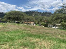 Foto Terreno en Venta en  Cumbayá,  Quito  CUMBAYA SE VENDE TERRENO PARA VIVIENDA UNI O BIFAMILIAR (IV)