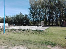 Foto Terreno en Venta en  General Roca ,  Rio Negro  ruta 22 1