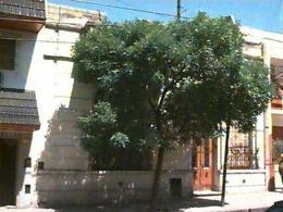 Foto Terreno en Venta en  Flores ,  Capital Federal  LAFUENTE 300