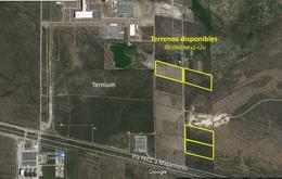 Foto Terreno en Venta en  Pesquería ,  Nuevo León  4 Últimos Terrenos de 60,000 mts2 en Pesquería, N.L.