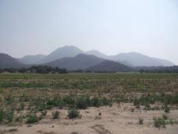 Foto Terreno en Venta en  Rancho o rancheria Cruz Blanca (Santa Cruz),  Tepeapulco  TERRENO TEPEAPULCO , HG0
