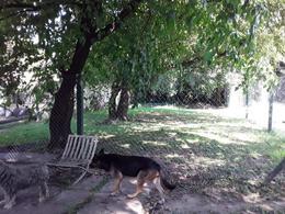Foto Terreno en Venta en  Moreno ,  G.B.A. Zona Oeste  Lugones al 800