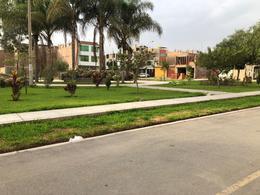 Foto Terreno en Venta en  Carabayllo,  Lima  Avenida Los Laureles. Urb San Antonio de Carabayllo 2
