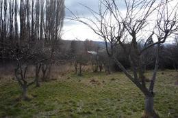 Foto Terreno en Venta en  Trevelin,  Futaleufu  Parcela 12