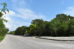 Foto Terreno en Venta en  Solidaridad ,  Quintana Roo   LOTE COMERCIAL AV. PASEO DEL MAYAB  PLAYA DEL CARMEN C2381