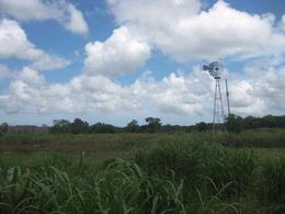 Foto Quinta en Venta en  Dzemul ,  Yucatán  Rancho en venta en Dzemul, Yucatán, con más de 18,000 m2
