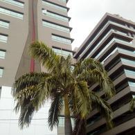 Foto Departamento en Alquiler en  Guayaquil ,  Guayas  ALQUILER DE SUITE AMOBLADA EN CIUDAD  DEL SOL
