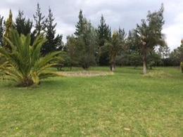 Foto Quinta en Venta en  Sur de Cayambe,  Cayambe  Cayambe - Juan Montalvo, Hermosa Finca en Venta 18.000 m²