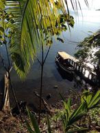 Foto Terreno en Venta en  Puerto Lindo  ,  Colon  FINCA UNICA EN BOCAS DEL TORO PANAMA FRENTE AL MAR-ISLA POPA