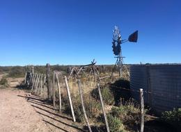 """Foto thumbnail Campo en Venta en  Patagones ,  Interior Buenos Aires  """"El Jagüelito"""", Departamento El Cuy, Provincia de Río Negro."""