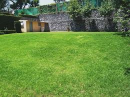 Foto Terreno en Venta en  San Pedro Barrientos,  Tlalnepantla de Baz  Tlalnepantla, 25,000m2, Terreno plano y bardeado