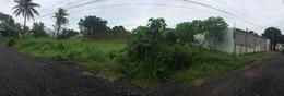 Foto Terreno en Venta en  Campestre,  Veracruz  ENTRE TULIPANES Y BUGANVILIAS