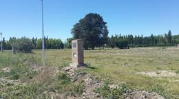 Foto Terreno en Venta en  Cinco Saltos,  General Roca  ruta 151 y rotonda centenario