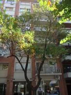 Foto Departamento en Venta en  Las Cañitas,  Palermo  NEWBERY JORGE entre CAMPOS LUI y BAEZ