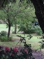 Foto Terreno en Venta en  Salsipuedes,  Colon  HERMOSOS TERRENOS EN SALSIPUEDES