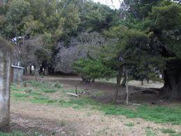 Foto thumbnail Campo en Venta en  Azul ,  Interior Buenos Aires  Azul,a 20 km de Cachari