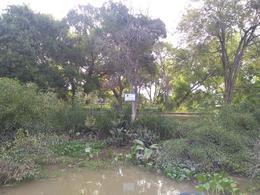 Foto Terreno en Venta en  Zona Delta Tigre,  Tigre  Canal B 3 Pa 36 y 37