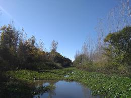 Foto Campo en Venta en  Sandor Mikler,  Zona Delta San Fernando  Arroyo Sandor Mikler